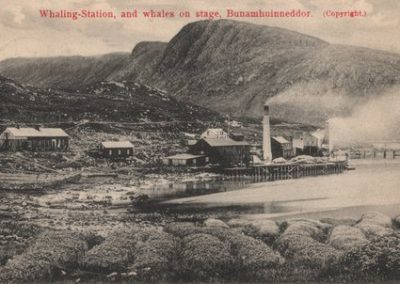 Whaling Station